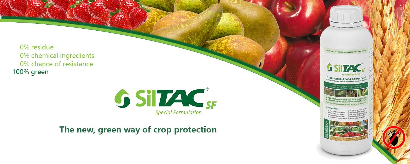 website banner Siltac 1 EN