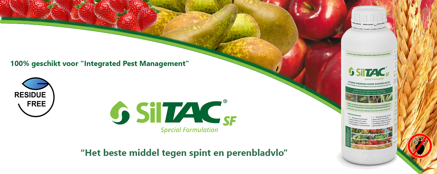 website banner Siltac 1 NL 2020